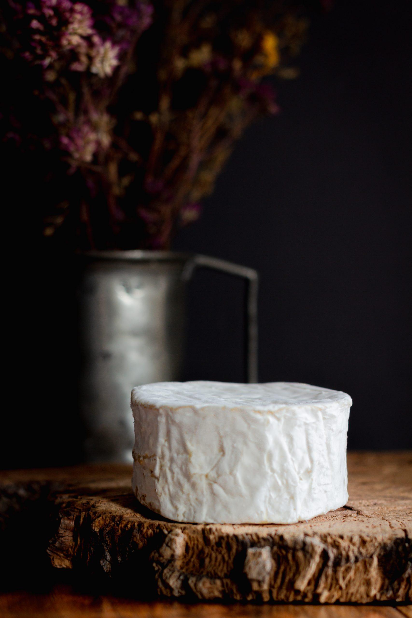 foodstyling queso de cabra madrid